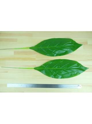 Лист банана 64 см