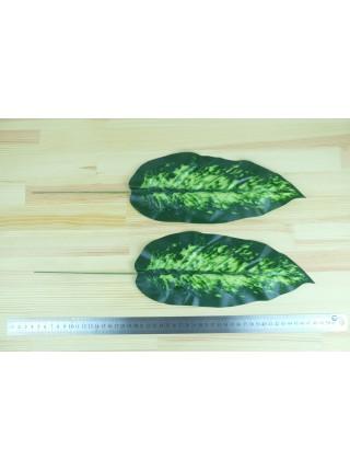 Лист диффенбахии 47 см