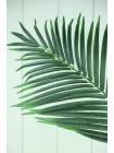 Лист пальмы 76 см