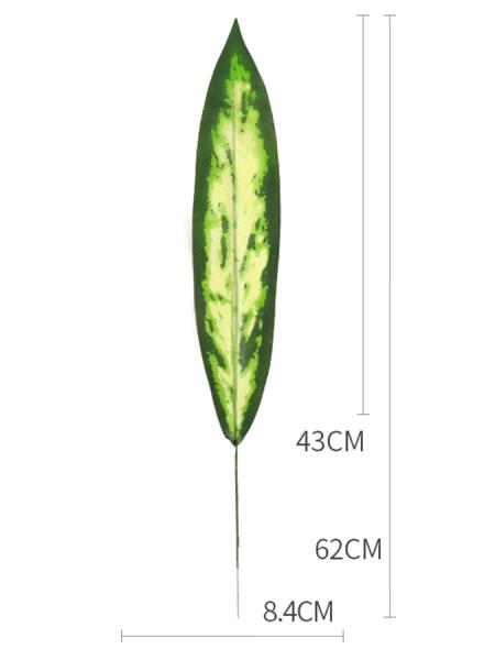 Лист сансевиерии 62 см (1)