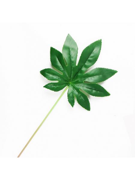 Листья тропических растений №1