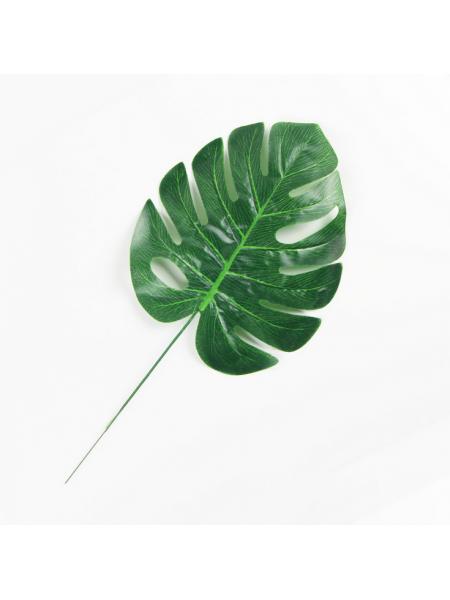Листья тропических растений №4