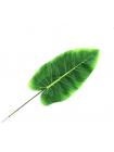 Листья тропических растений №9