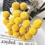 Желтые шары на ветке