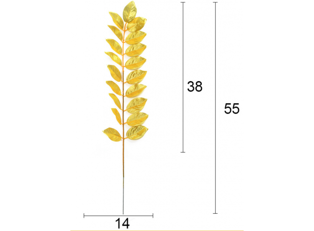 Листья рускуса 55 см