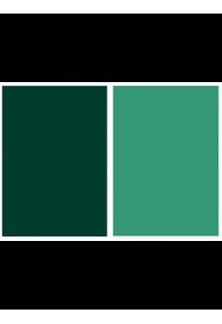 Фотофон темно-зеленый + салатовый